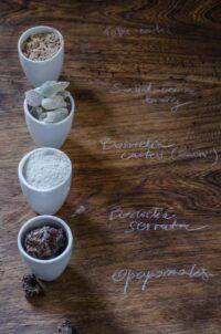 Kadzidłowiec olejek eteryczny Boswellia serrata (Indie)