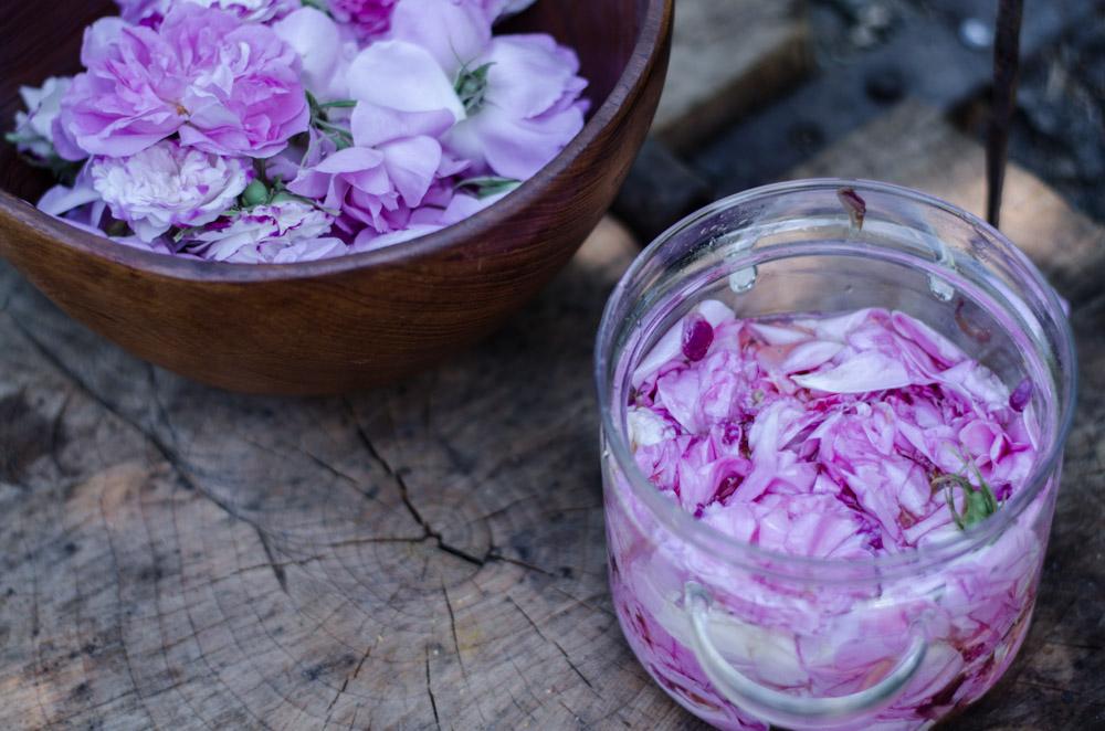 Olejek różany z ciepłego enfleurage